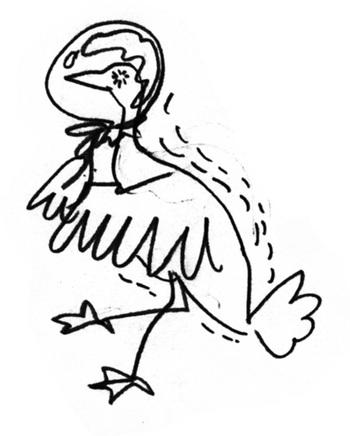 crazy-bird436.jpg
